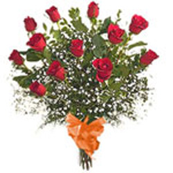 Long Stem 12 Red Roses